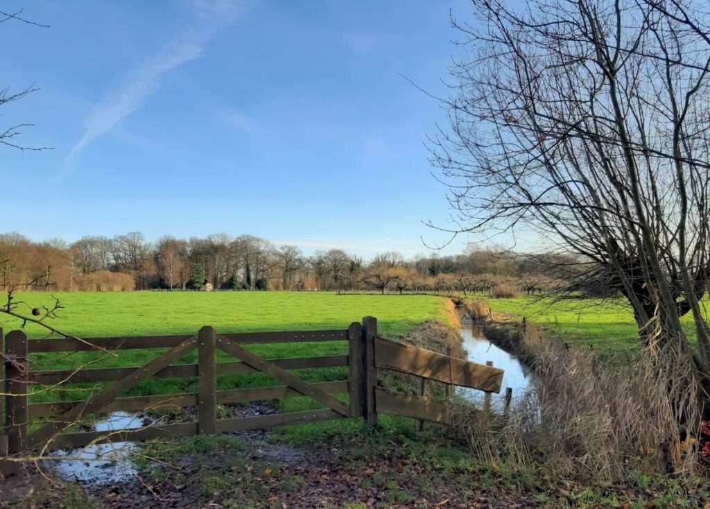 Uitzicht over de weilanden - Amelisweerd