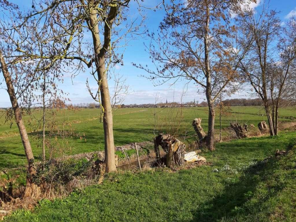 Zicht op Nederhorst