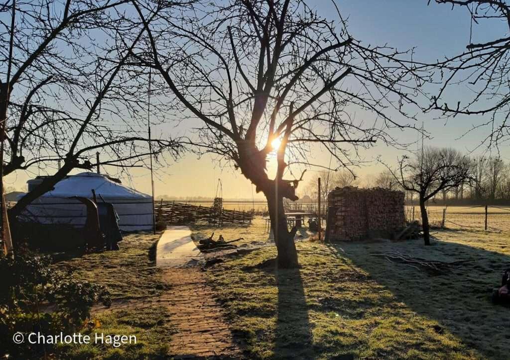 Zicht op de yurt