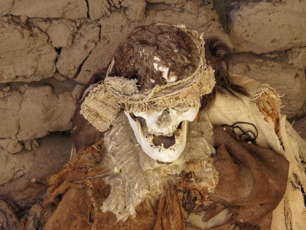 mummie 5