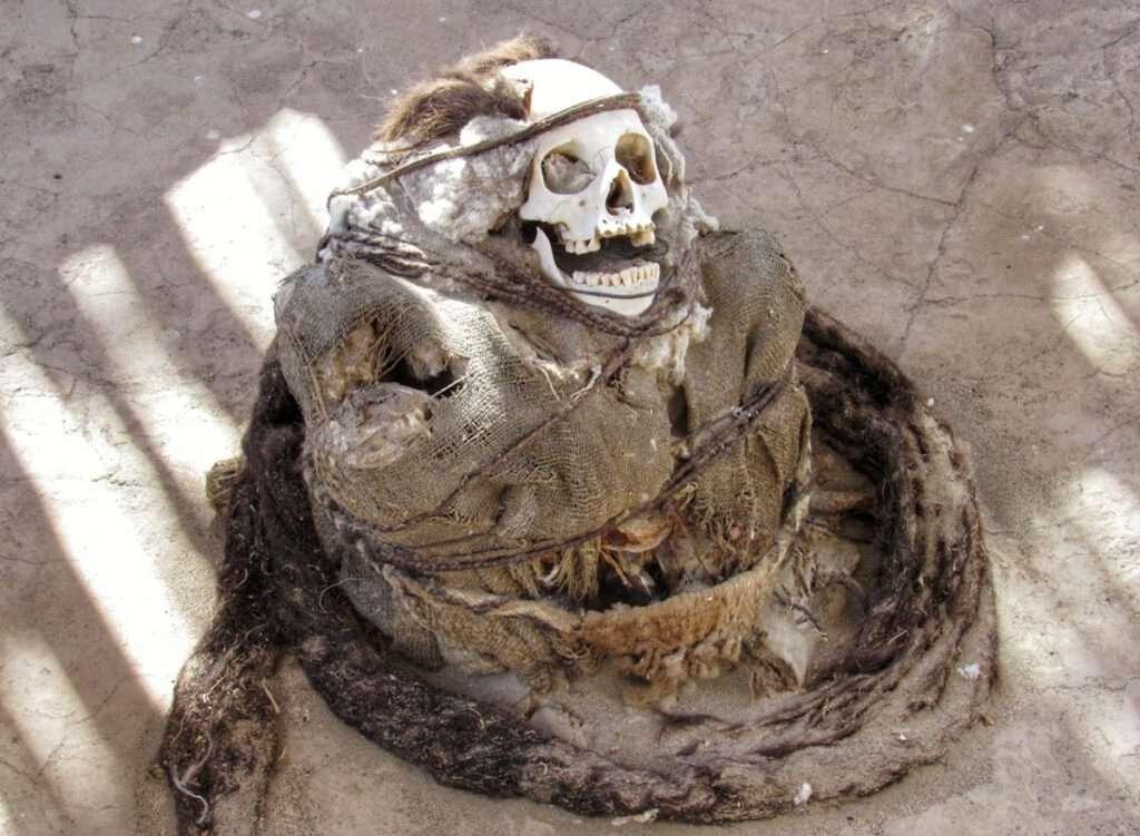 mummie 3
